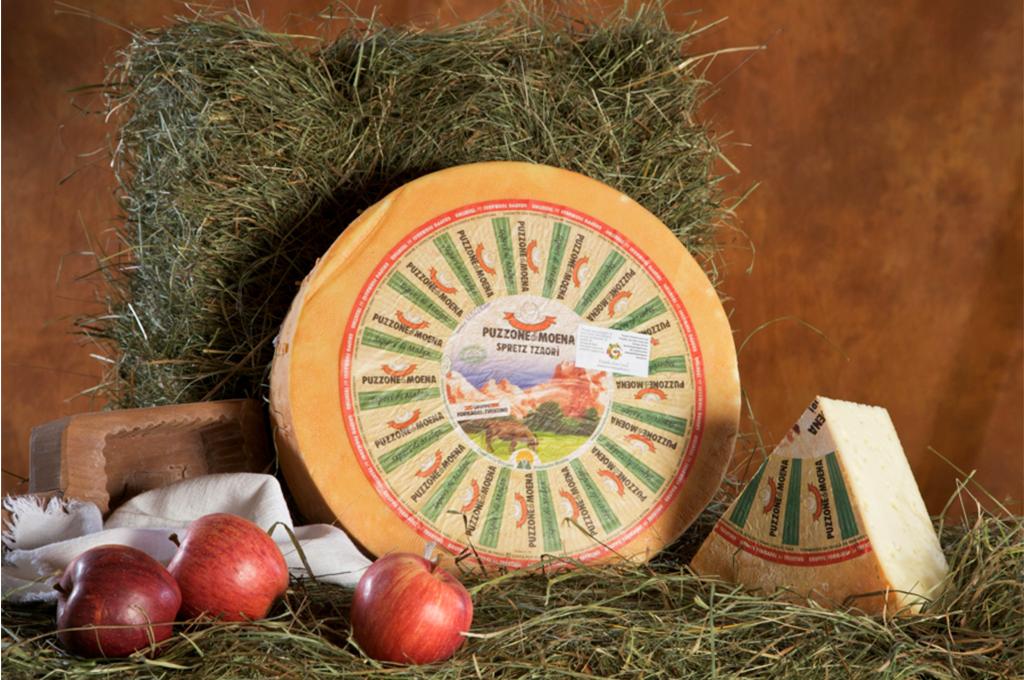 puzzone di moena formaggio tipico della val di fassa