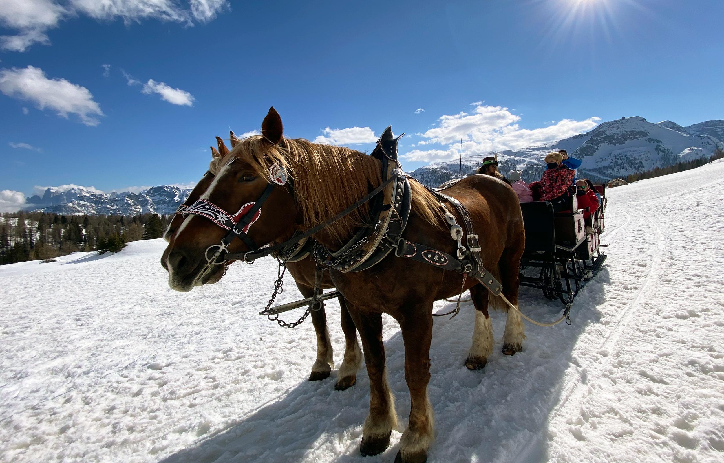Hotel Alle Alpi Beauty e Relax - Hotel Moena in val di Fassa Trentino