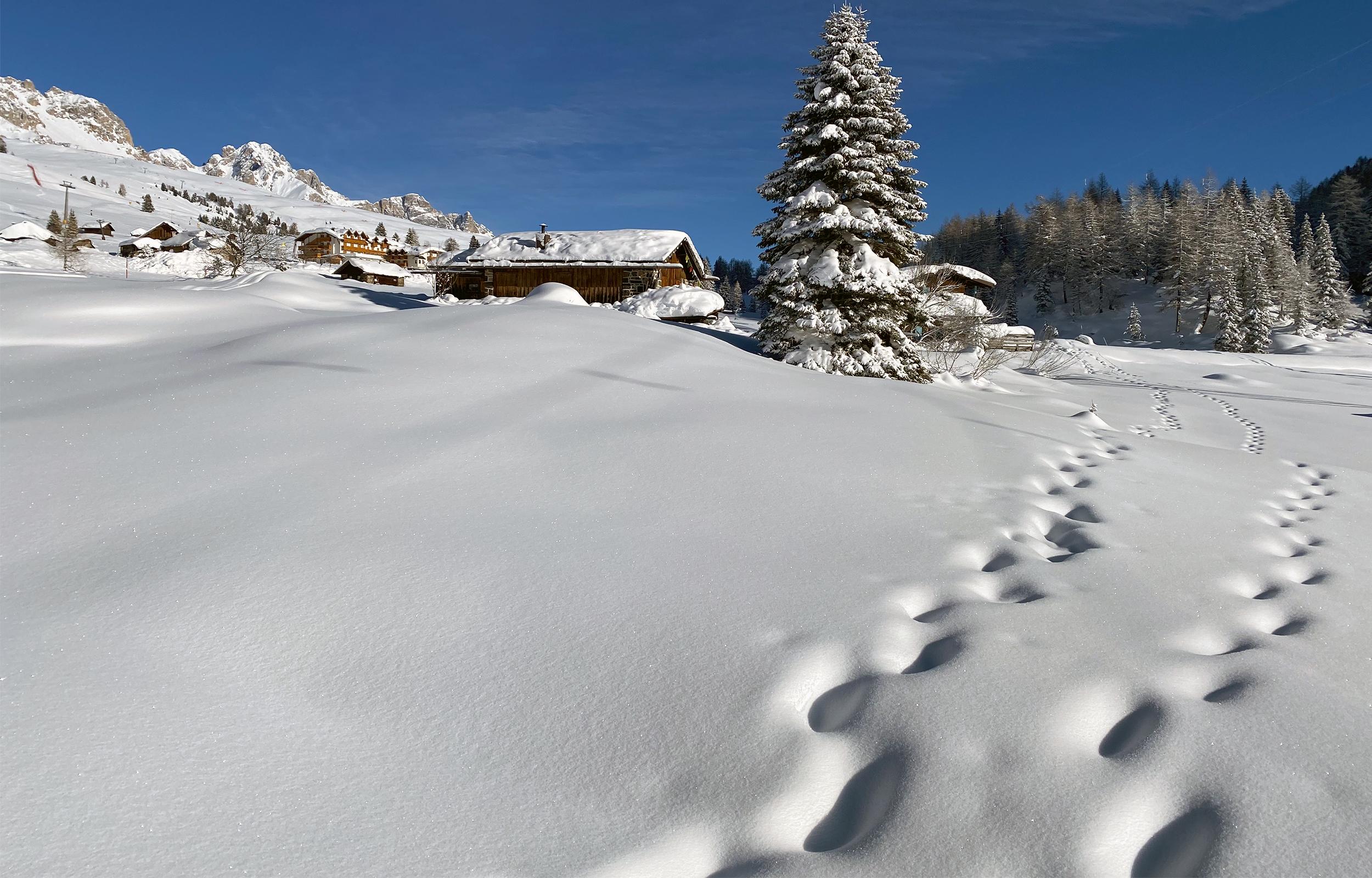 sciare sulle dolomiti a moena